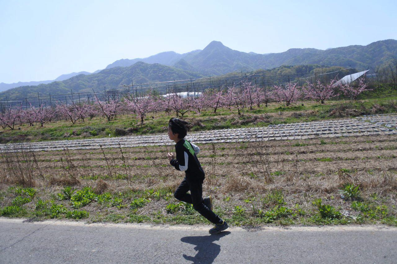 photo_2017-04-24_12-03-57.jpg