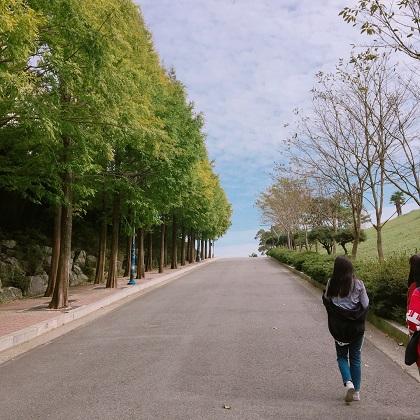 3. 이순신공원 (1).JPG