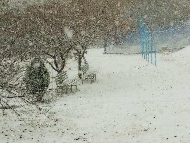 눈오는풍경01.jpg