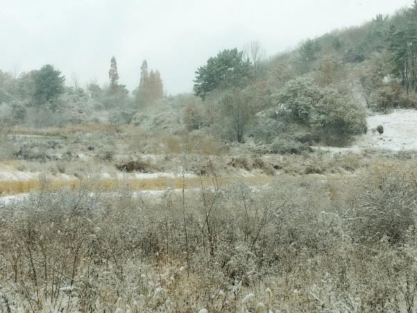 힘껏걷기_눈오는날05.jpg