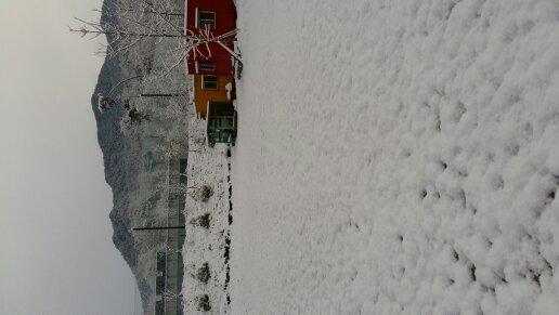 눈2.jpg