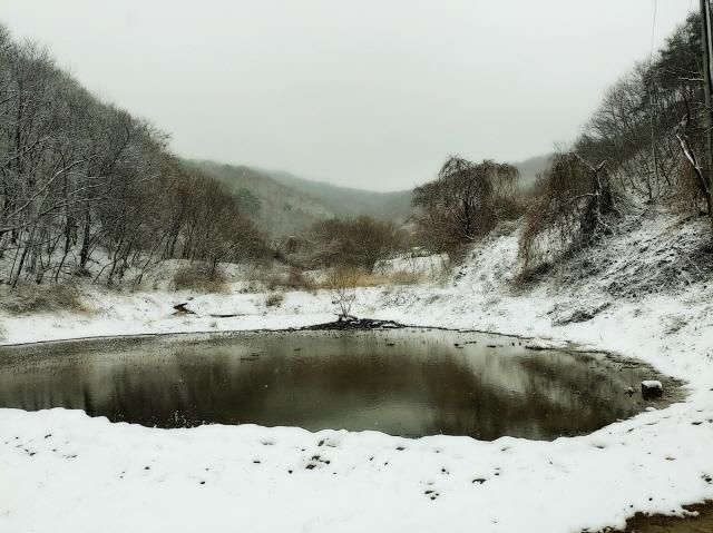 눈오는날01.jpg