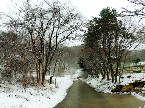 눈오는날03.jpg