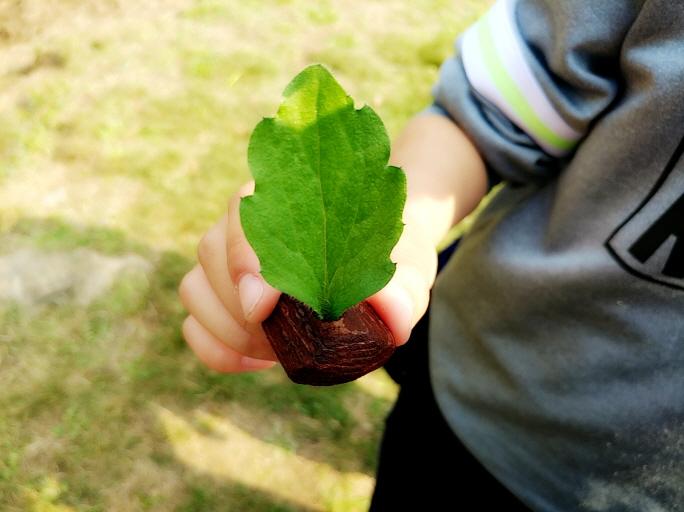 나뭇껍질배06.jpg